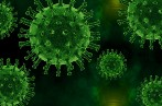 Image of spiky green virus particles on a black background